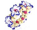 Armband med blommor.