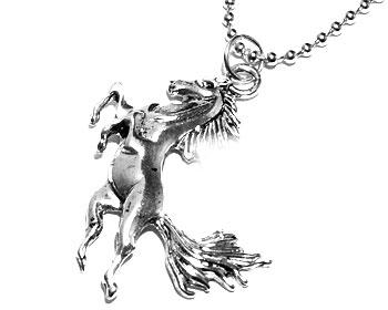 Hästhalsband på nätet från Atinmood. Längd cirka 5 cm. Kulkedja medföljer.