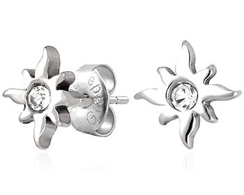 Stålörhängen i kirurgiskt stål